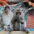 Two Little Monkeys by Mike Stone