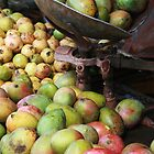 Mangoes in a market by gustinegirl