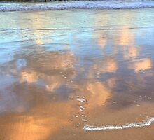 Wet Sand Reflections-1497 by Barbara Harris