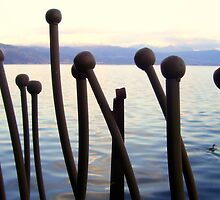 Ioannina by the Lake Greece by fruitcake