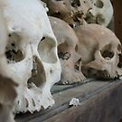 Skulls by stringsforlife