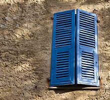 blue shutter by dominiquelandau