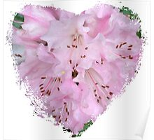 Spring - Pink Flower II - Heart Poster