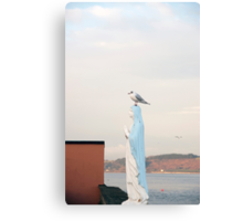 virgin Mary statue with a seagull Canvas Print