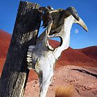 Dying in the Desert by Lynda Berlin
