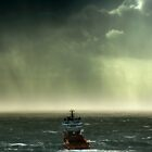 Into the Storm. by Paul Campbell