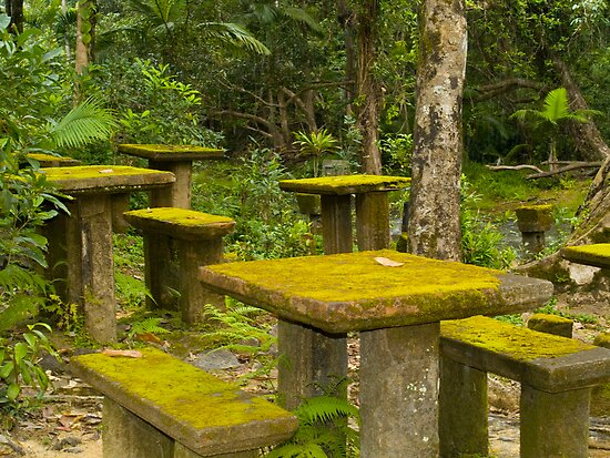 Picnic in the rainforest - Paronella Park - Queensland - Australia by Paul Davis