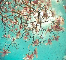 The Hanging Garden by Cassia