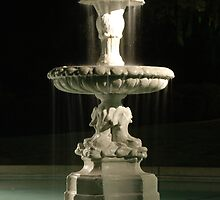 Highland Fountain by Brian Humek