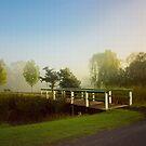Summer mist . . . by Rosalie Dale