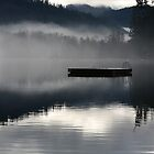 Misty Morning at the Old Swimmin' Hole by Stephen  Van Tuyl