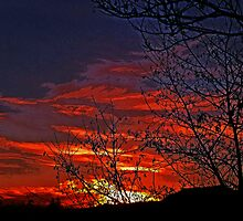 Skies On Fire by Gail Bridger