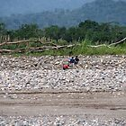 Amazon Riverbank by kjcasey