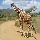 Wildlife Leg It!!!! Giraffe  by Amie Swannell