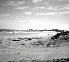 beach scene by timrockk