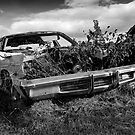The Old Dodge In The Country by georgiaart1974