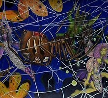 The Fairy Stalker's Web by Jedro