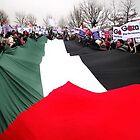 Gaza Flag Carriers by kombizz