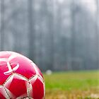Soccer by andyclement