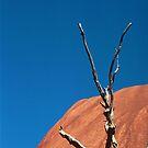 Uluru 1 by Martin How