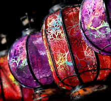 magic lanterns by Anthony Mancuso