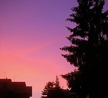 Purple and pink sunset by sstarlightss