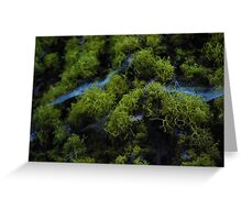 In the moss Greeting Card