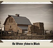 As Winter Fades to Black by J. D. Adsit