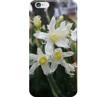 Spring Flora After the Rain iPhone Case/Skin