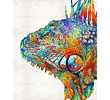 Colorful Iguana Art - One Cool Dude - Sharon Cummings Photographic Print