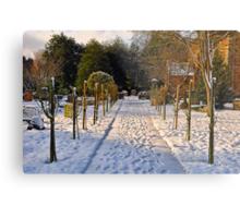 Snow Scene~ Metal Print