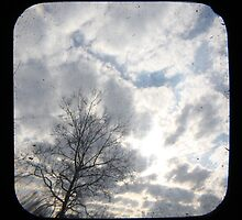 Clouds TTV by Judi FitzPatrick