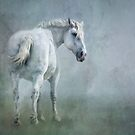 The white horse by Jan Pudney