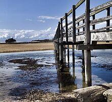 The Boardwalk by Norman Heywood