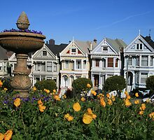 San Francisco: The Painted Ladies by Kezzarama