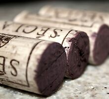 wine.corks by ania nadybska