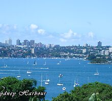 Sydney Harbour by Adara Rosalie