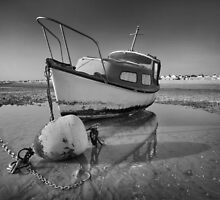 Stranded by Mark Cass