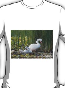 Swan with Cygnet T-Shirt