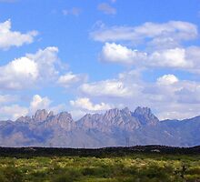 Organ Mountians, New Mexico by CynLynn