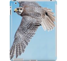 Priaire Falcon Swooping iPad Case/Skin