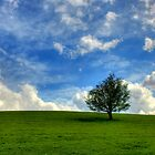 Land And Sky by mliebenberg