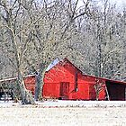 Winter Red by suzannem73