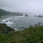Foggy Beach on the Oregon Coast by photoclimber