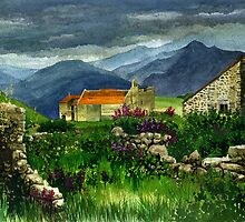 Near Prades, Pyrenees Orientales by Mike Glaysher
