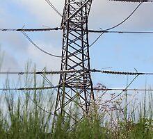 Pylon on the march by Traffordphotos