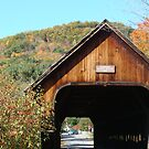 Woodstock's Middle Bridge by Catherine Mardix