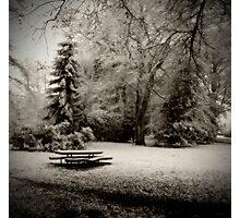 Cold Park Photographic Print