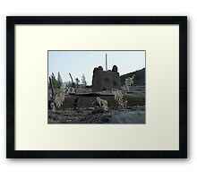 Childs play at lost creek lake Framed Print