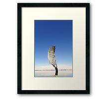Lake Bonney reflections 4 Framed Print